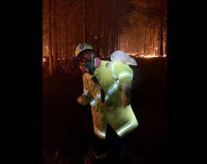 Австралії для відновлення після пожеж знадобляться десятиліття