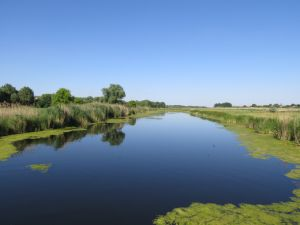 В Славянском районе созданы еще восемь заказников
