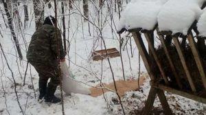 В Тернопольской области подкармливают животных