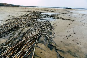 Меліоративну мережу довкола Світязя слід переорієнтовувати на водозбереження