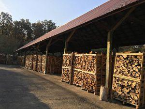 Хоч би якою м'якою була зима, а дрова потрібні!