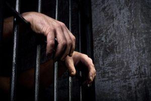 Мешканець Чигиринського району отримав покарання за жорстоке поводження з твариною