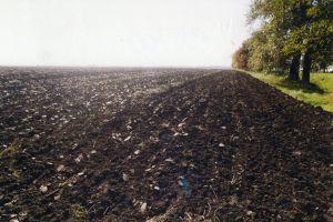 На Херсонщині земля приносить більше грошей