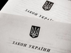 Про внесення змін до статті 6  Закону України «Про Державний бюджет України на 2020 рік»