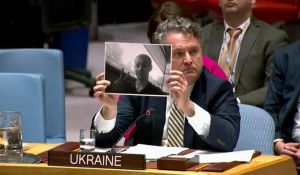 The United Nations Security Council supports Ukraine