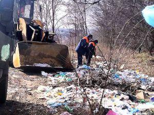 Поблизу селища Павлиш ліквідували несанкціоноване сміттєзвалище