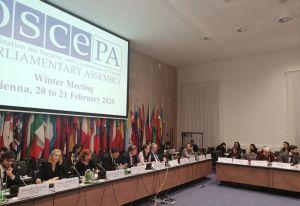 На засіданні ОБСЄ обговорили  безпекову ситуацію в нашій країні