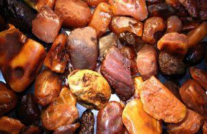 На Житомирщині готуються до легалізації видобутку «сонячного каміння»
