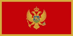 У Черногорії збирають кошти  на реабілітацію військових