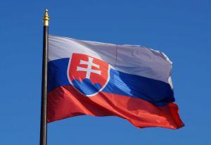 Словакия  временно открывает  пешеходный переход