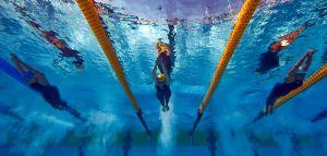 Водные виды спорта. FINA посоветуется с атлетами о проведении ЧМ