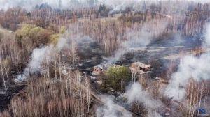 Пожежу у Чорнобильській зоні гасили рятувальники і... дощ