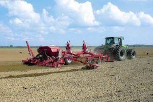 Не витримало посухи поле з озимим житом