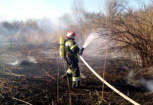 С начала года — более 400 пожаров. Хватит!