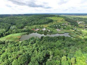 Сумская область: «Продается шикарный участок в лесу»