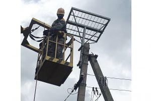 Енергетики «Одесаобленерго» рятують лелек