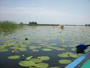 В Запорожской области туристы преодолели сложный маршрут