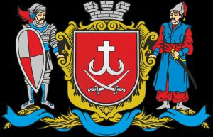 Обговорюють проект стратегії розвитку Вінницької міської ОТГ