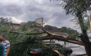 Волинь: Буревій зривав дахи і ламав дерева