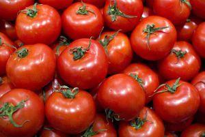 Дожились: свои томаты в одной цене с турецкими