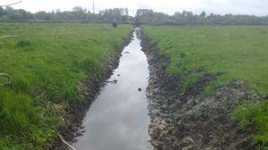 Чернігівщина: Нечистоти пливуть у Десну