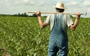 Херсонщина: Фермеры  как вымирающий вид