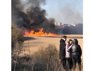 Волынь: Против поджигателей — всей громадой