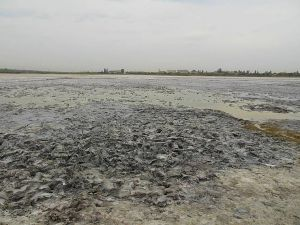 На Херсонщине гибнет целебное озеро