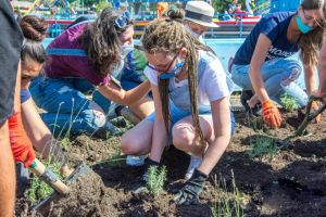 У Маріуполі учасники фестивалю прикрасили парк лавандою