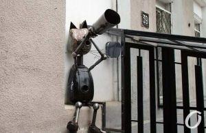 Одеса: У центрі міста з'явився кіт-астроном