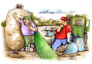 Як зберегти врожай до весни