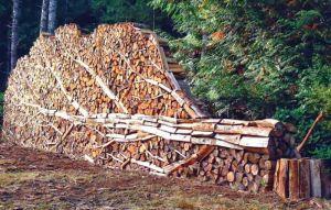 Закарпатье: Осень пришла — заготовляй дрова!