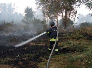 Будут искать виновных в пожарах, вспыхнувших на Луганщине