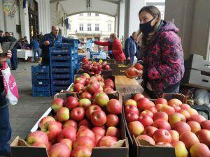 Львовщина: Во дворце искусств провели День яблок