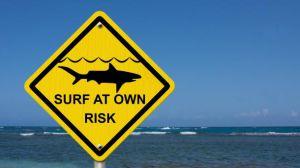 Посольство розповіло про стан туристів, на яких напала акула в Єгипті