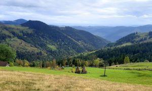 Ивано-Франковщина: Земли вернули парку