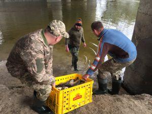 Луцк: Рыбачить будет интереснее