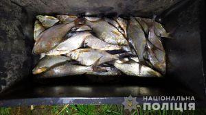 Черниговщина: Браконьерством занимались рыбоохранники