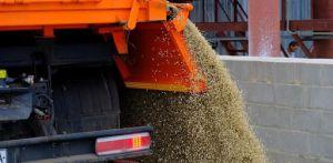Дніпропетровщина: Восьмий рік поспіль — понад три мільйони тонн зерна