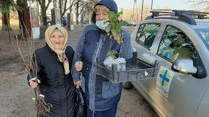 Фруктовые деревья с Брусиловщины будут расти на Луганщине