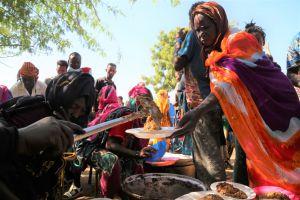 Ефіопія на порозі гуманітарної кризи