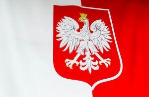 Армійським корпусом США командуватимуть з Польщі