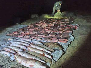 Херсонщина: Уничтожали рыбу  в местах зимовки