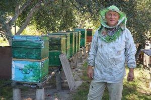 Павло Фурсович тридцять років бджіл «пасе»