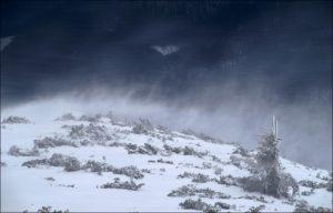 Спасатели Прикарпатья призывают воздержаться от походов в высокогорье