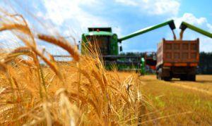 Агропродукция: импорт возрастает