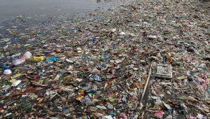Болгарія: Плаваючий смітник не досяг Дунаю