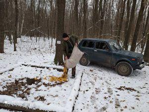Полтавщина: У люті морози підгодовують диких тварин