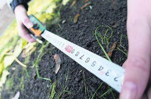 Сумщина: Земельний пай — стабільний прибуток