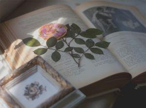 «Роман»... в газетах
